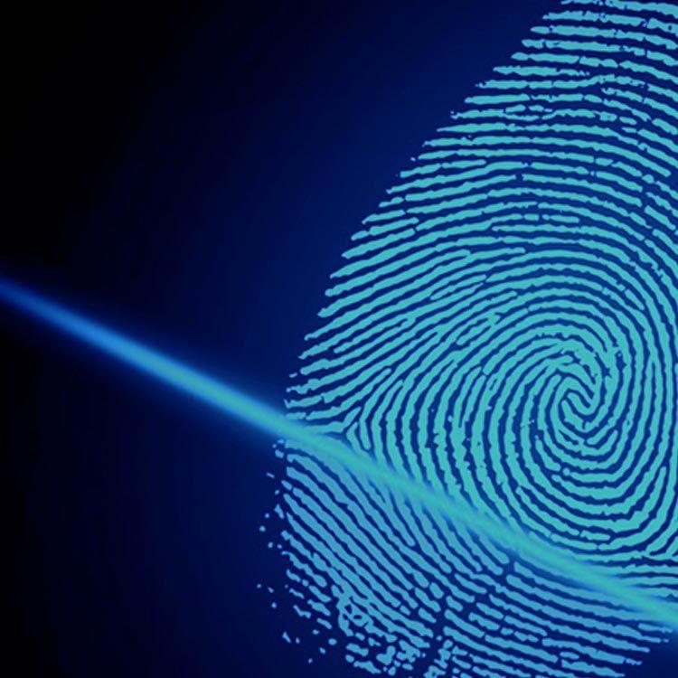 IIB - Crimeversicherung
